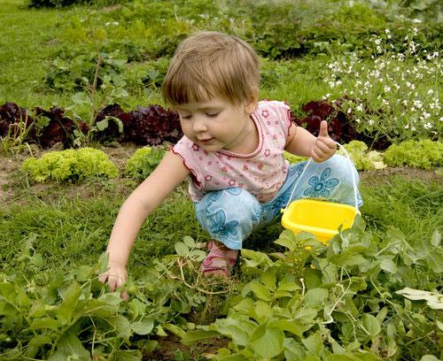 Zahonek-bezpecna-zahrada